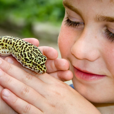 Junior Animal Keeper Day – July 26th, August 9th & 30th